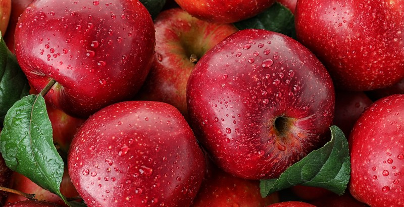 ¡Células madre de manzana, un tesoro!